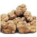 Truffes blanches d'Italie